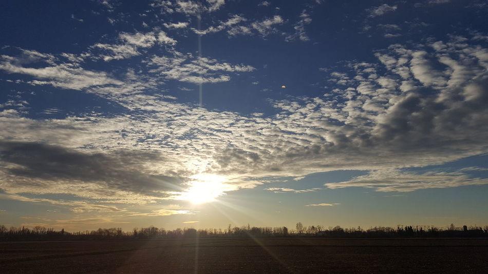 Field Sky Beauty In Nature