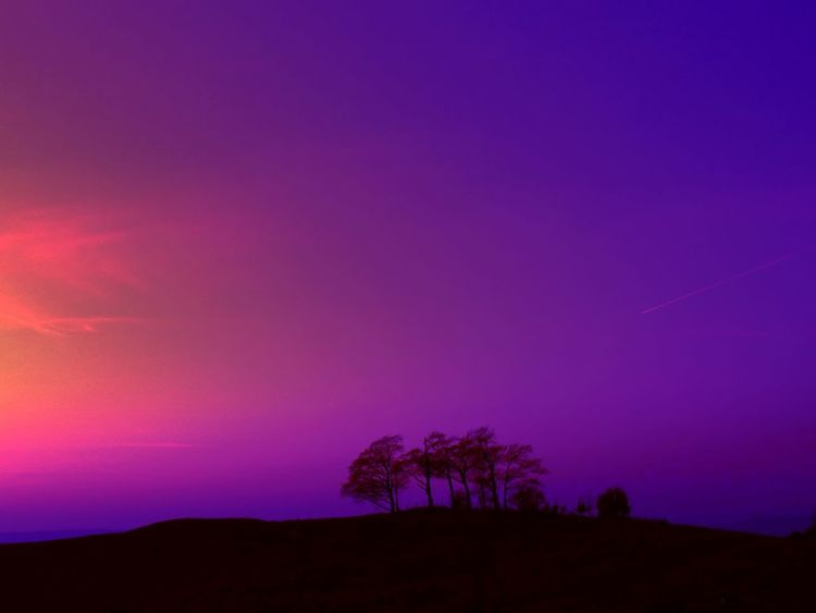 Countryside Views Colourful Colors Landscape #Nature #photography TreePorn Sunset Silhouettes Coloursplash EyeEm Landscape Eye4photography  Creative Light