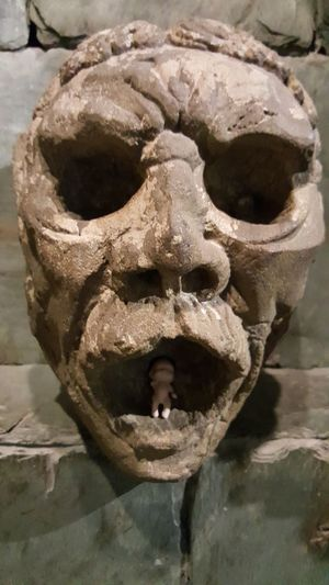 Skull is hungry. Lol :) Check This Out Samsung Galaxy Note 5 Hanging Out Citymuseum Stl
