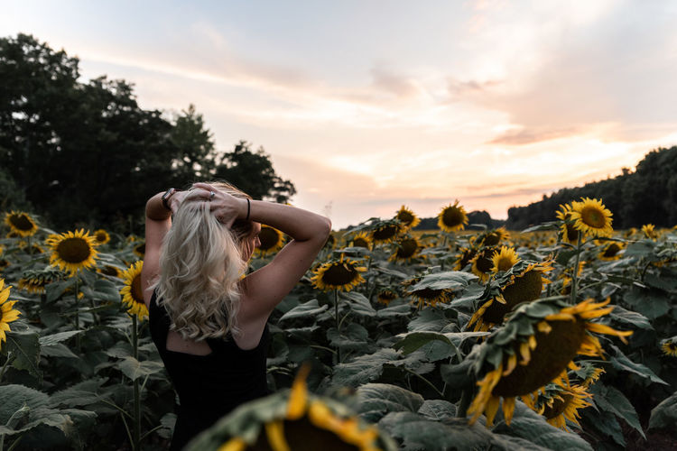 Rear view of woman standing amidst sunflowers against sky during sunset