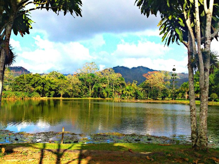 Taking Photos Turrialba Enjoying Life Check This Out Hello World Costa Rica