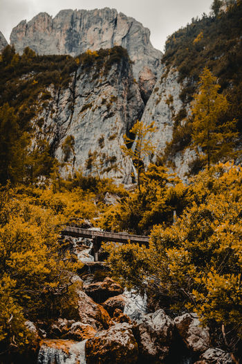 Architecture Autumn Beauty In Nature Change Day Formation History Land Mountain Nature No People Outdoors Plant Rock Rock - Object Rock Formation Scenics - Nature Solid Travel Travel Destinations Tree Yellow