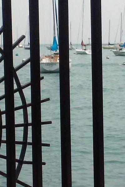 Behind Bars Chicago ♥ The Purist (no Edit, No Filter) Enjoying Life Taking Photos