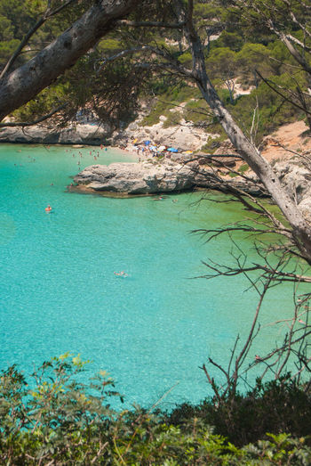 Cala Mitjana Spanish Island Balearic Islands Beauty In Nature Day Group Of People Holiday Land Menorca Beach Nature Outdoors Plant Rock Scenics - Nature Sea Tranquil Scene Tranquility Travel Destinations Tree Trip Turquoise Colored Underwater Vacations Water