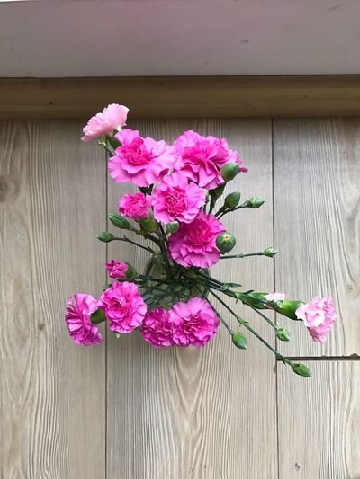 EyeEmNewHere Flower Fragility Pink Color Freshness Petal Beauty In Nature Nature Plant Close-up No People Growth Flower Head Blooming Outdoors Day