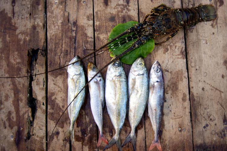 Seafood Food