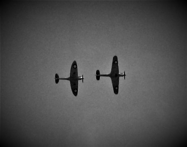 "Here is a (Black and White) Photo Shot that was taken at Capel le Ferne in July 2017. This Photo was taken during the time when both the Spitfire and Hurricane were performing their display for ""The Battle of Britain Memorial"" Service. 2017 2017 Year Black & White Black & White Photography Capel Le Ferne England, UK Folkestone Kent England Great Britain Hurricane Aircraft Planes In The Sky Sky Collection Travel Photography United Kingdom Aircraft Photography Battle Of Britain Black & White Collection Black And White Black And White Collection  Black And White Photography Black&white Black&white Photography Blackandwhite Blackandwhite Photography Blackandwhitephotography Spitfire"