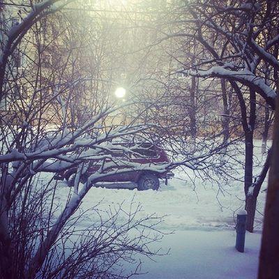 Опять снег:-( брррр