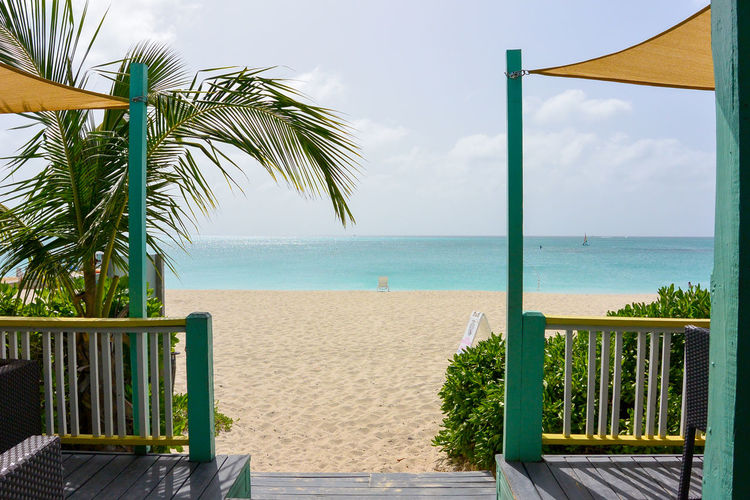Grace Bay Turks And Caicos Turks And Caicos Islands Beach Beauty In Nature Beauty In Nature Day Horizon Over Water Nature No People Outdoors Palm Tree Sand Scenics Sea Sea And Sky Seascape Sky Tranquil Scene Tranquility Tree Turks And Caicos Beach Turquoise Water Vacations Water