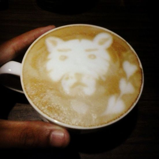 Ini macanku,mana macanmu?haha Newbie Lattearttoday Latteart Latteporn coffeeaddict coffeeholic baristadiary instabarista instacoffee insphoto instaday instadaily espressoday espressoyourlife