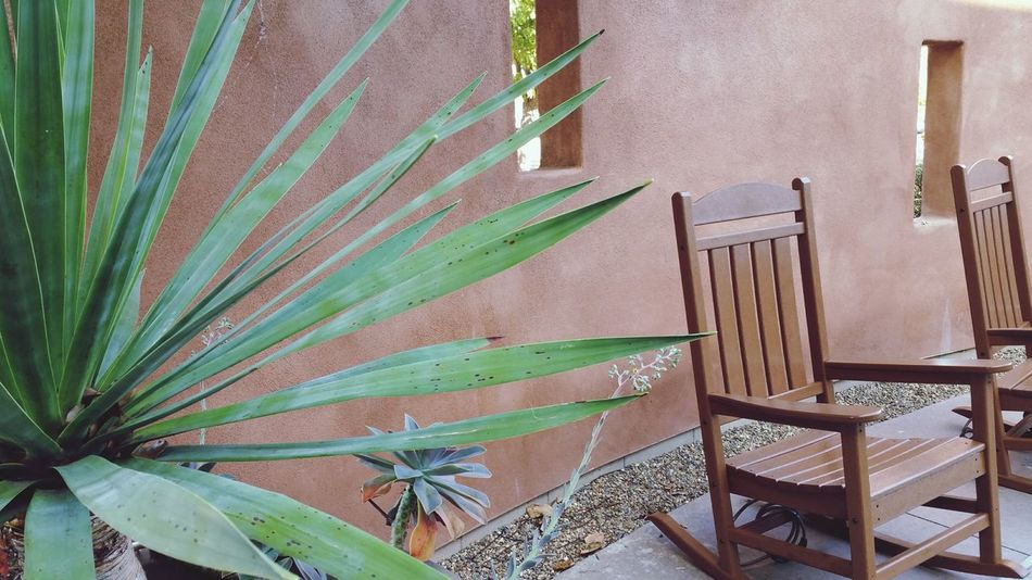 Plant Green Rocking Chair Bush Brown Wall Adobe Architecture Brown Plants Outdoors Adobe Wall