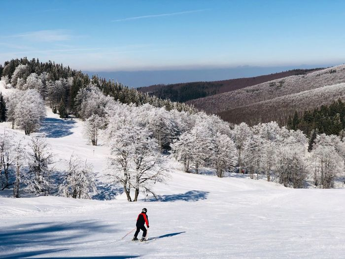 Skier going down the slope surrounded by forest covered in snow on a day with clear blue sky Resort Day Outdoors Motion Frozen Trees Forest Blue Sky Sunny Mountain Range Skiing Skier Slope Snow Winter Cold Temperature Mountain Tree Winter Sport Beauty In Nature Sport Ski Holiday Full Length One Person Scenics - Nature Environment Beauty In Nature Leisure Activity Vacations Landscape