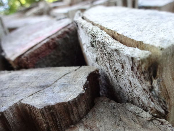Close Up Close-up Day Extreme Close Up Focus On Foreground Macro No People Objects Outdoors Pile Plank Selective Focus Single Object Weathered Wood Wooden Woodpile