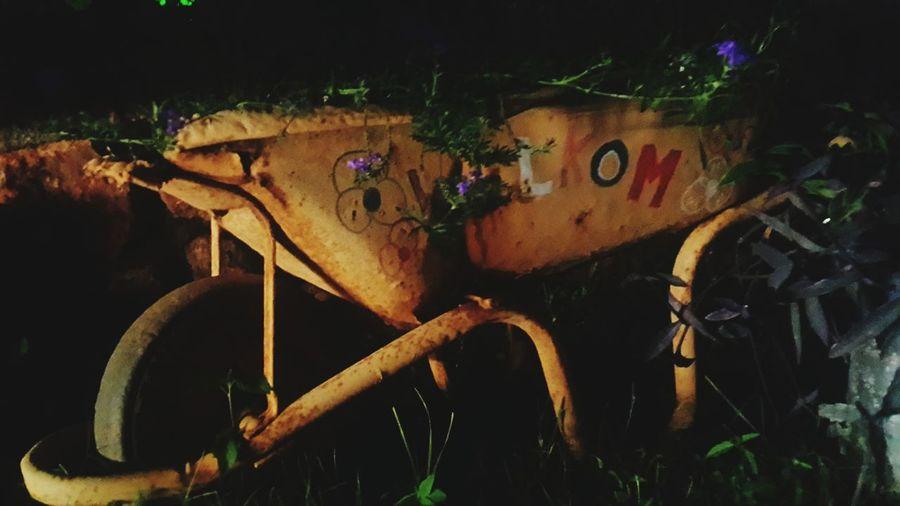 Garden Wheelbarrow Night Photography Homemade