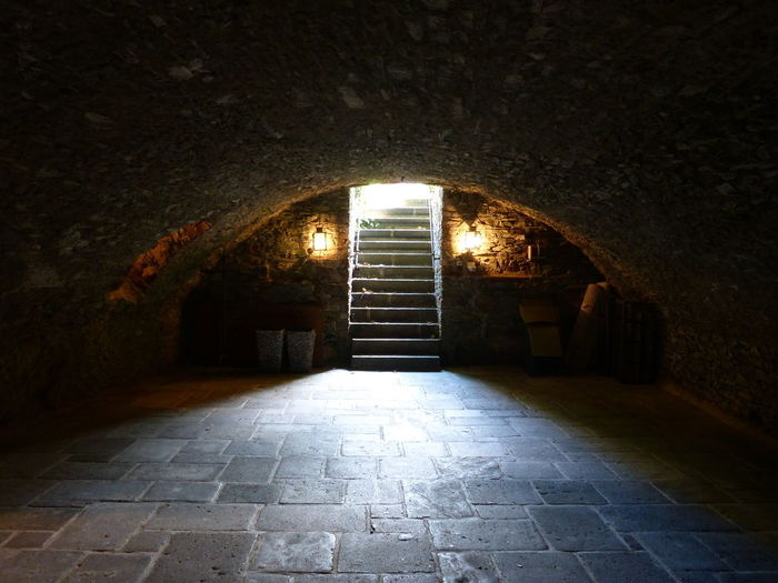 Ancient Castle Historical Building Mosel Pyrmont The Past Observer Absence Basement Brick Germany History Architecture Light At The End Of The Tunnel Old Tunnel