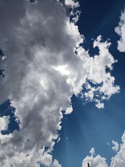 Cloudscape blue sky with clouds background environmental Blue Sky With Clouds Eternity Mountain Blue Tree Sky Close-up Cloud - Sky Calm Fluffy Wispy Cirrus Stratosphere Cumulus Cumulonimbus Cumulus Cloud Spread Wings Meteorology Sky Only Cloudscape Heaven
