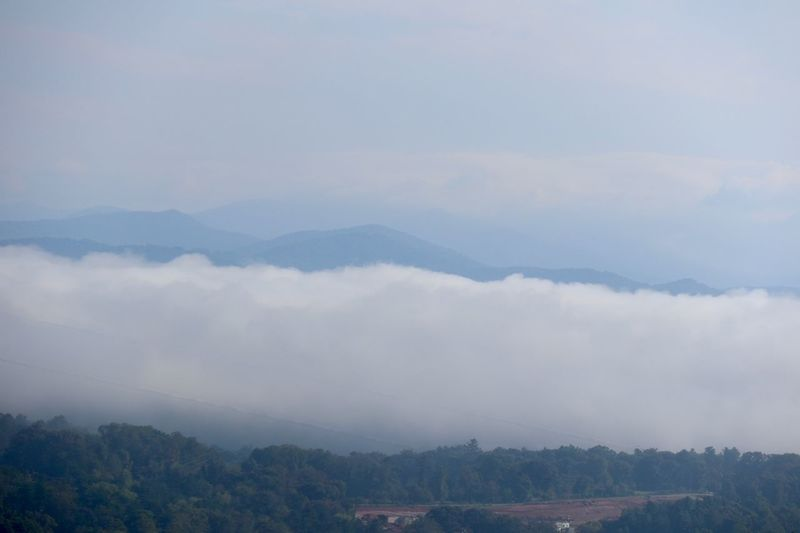 Early Morning Fog in the Smokies Mountain Scenics - Nature Cloud - Sky Sky Environment Beauty In Nature Tree Mountain Range Fog Nature Landscape Tranquility No People Tranquil Scene High Angle View Outdoors Mountain Peak
