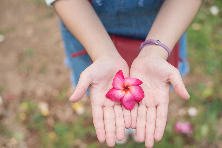 Midsection of woman holding flower while standing on land