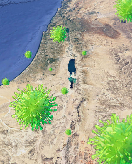 High angle view of man amidst plants at beach