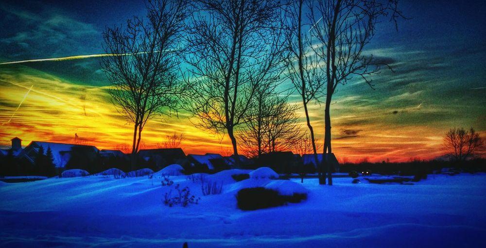 Snow Blue,