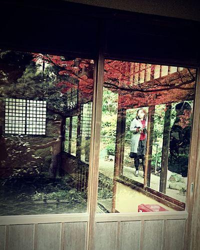 🅰️utumn Window