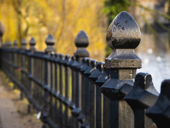 A fence in a park in Brugge, Belgium. Outdoors Metal Sunlight Plant Safety Protection Tree Close-up Security Fence Railing No People Barrier Day Nature Focus On Foreground Black Color Black Fence Park