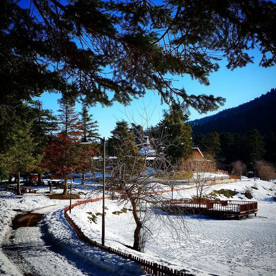 Turkey Bolu Golcuk Frozen Lake Nature_collection Nature EyeEm Winter View Photo