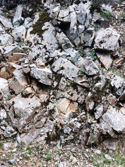 The rock Cedar