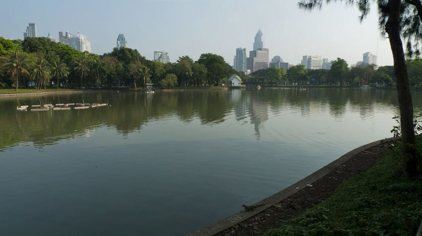 Lumphini Park vista. The park is located in the southeast of central Bangkok, Thailand. Bangkok Lumphini Park Thailand Built Structure City Day Lake Landscape Landscape_photography Nature No People Outdoors Plant Reflection Sky Tranquility Tree Water Waterfront