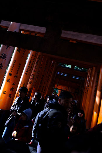 Contrast And Lights Shrine Of Japan Torii Gate Architecture Built Structure Day Large Group Of People Oinarisan