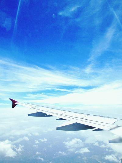 Morning Flight Flightview