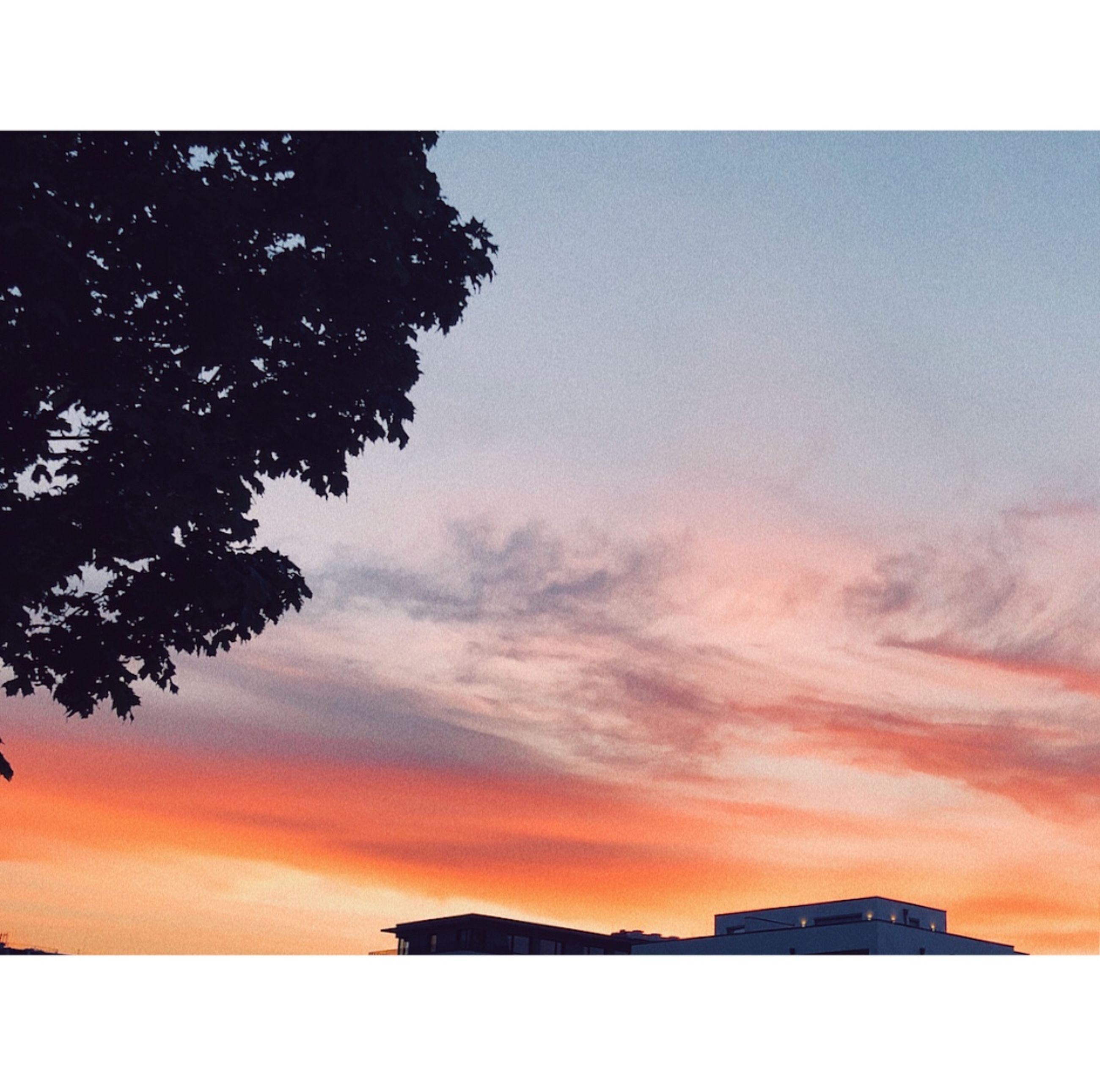sky, sunset, cloud - sky, tree, nature, plant, no people, beauty in nature, silhouette, orange color, architecture, scenics - nature, building exterior, built structure, outdoors, transfer print, auto post production filter, water, tranquility, tranquil scene