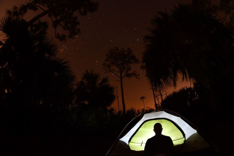 Under the stars Night Car Tree Silhouette Transportation Palm Tree Nature Real People Outdoors Adventure One Person Beauty In Nature Sky People