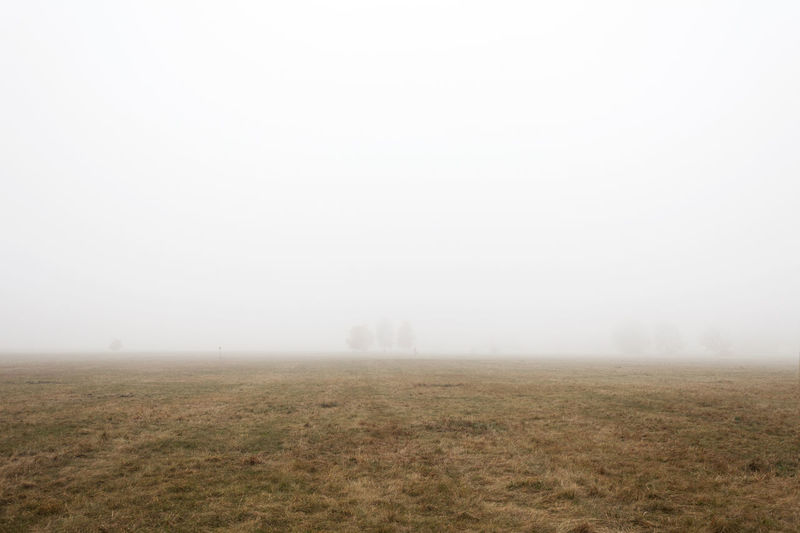 Berlin Berlin Tempelhof Berlin Tempelhof Airport Beauty In Nature Field Fog Landscape No People Outdoors Scenics Sky Tranquil Scene Tranquility Tree Weather Winter