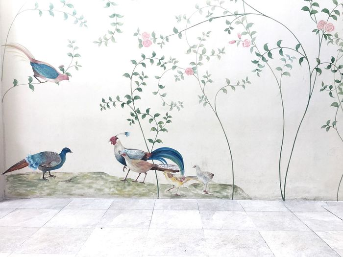 Bird Animal Themes Animals In The Wild No People Day Perching Outdoors