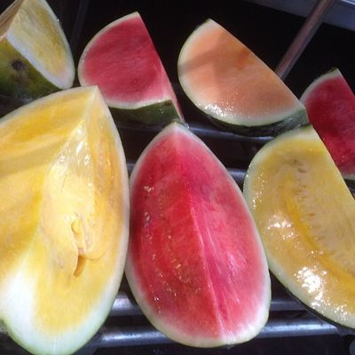 anyone care for some colourful #watermelon ?? IPhone Iphonesia Watermelon Igers IGDaily Instalove Instralia Igfame