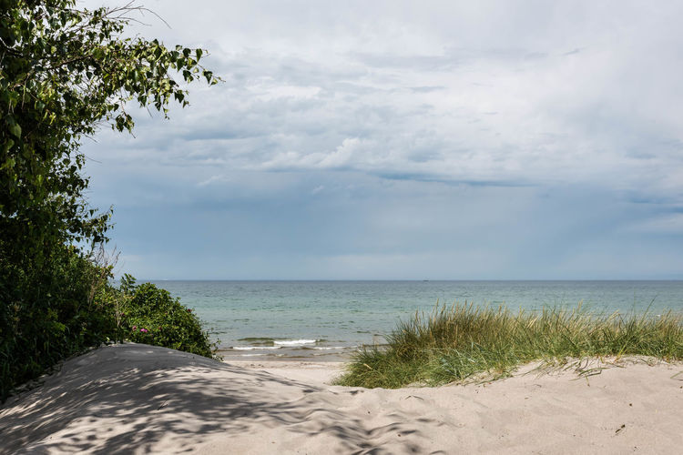 Baltic Sea Calm Cloud Cloud - Sky Cloudy Coastline Darß Day Germany🇩🇪 Growth Horizon Over Water Idyllic Landscape Nature No People Non-urban Scene Outdoors Sea Shore Sky Water Weststrand