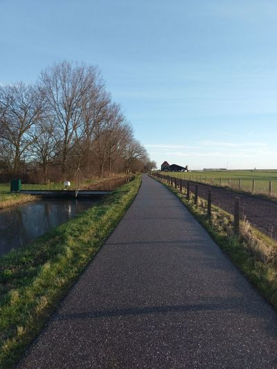 Marken Dutch countryside Marken Countryside Tradition Qualityoflife Sundayexploring Amsterdam Farming Netherlands #barn Terrain Field Green Winter Bare Tree The Way Forward Tranquil Scene Outdoors Grass Tree Day Sky No People Nature Road Tranquility Beauty In Nature Scenics