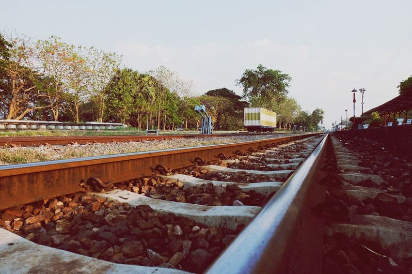 Railroad tracks in Thailand EyeEm Selects Tree Track Rail Transportation Railroad Track Plant Sky Nature Transportation Day Diminishing Perspective No People Metal The Way Forward Direction vanishing point Solid Growth Gravel Outdoors Mode Of Transportation