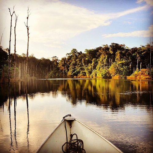 French Guyana Nikonfr Guyane Dom Nature Amazonie Amazonia Parc Lac Petitsaut Igl_igf_pixter_kit2 @wearepixter @igersfrance @igerslyon