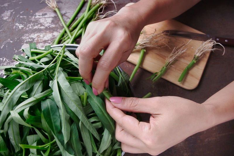 Morning glory : Close-up Finger Food Food And Drink Freshness Green Color Hand Herb Holding Human Body Part Human Hand Indoors  Leaf Morning Glory One Person Plant Plant Part Preparing Food Real People Vegetable Wellbeing Women