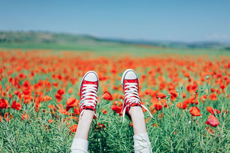 Hands also deserve nice shoes. Red Human Body Part People Nature Beauty In Nature Close-up Place Of Heart Live For The Story The Great Outdoors - 2017 EyeEm Awards Out Of The Box Poppy Poppy Field Poppies  Sneakers Day Outdoors Colors Colorful One Person Field Holding Summer Sommergefühle Let's Go. Together. 100 Days Of Summer Breathing Space Mix Yourself A Good Time Lost In The Landscape Connected By Travel Rethink Things Perspectives On Nature Be. Ready. Fashion Stories An Eye For Travel Love Yourself Go Higher Summer Exploratorium Visual Creativity