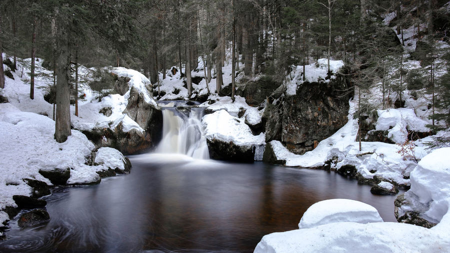 Krai-Woog-Gumpen im Schwarzwald Cold Temperature Snow Winter Beauty In Nature Water Scenics - Nature Tree No People Nature Environment Waterfall Rock Solid Land Forest Rock - Object Tranquility Tranquil Scene Flowing Water Outdoors Flowing Long Exposure Langzeitbelichtung Creek