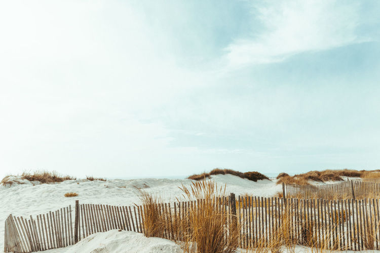 Sky Tranquility Beauty In Nature Scenics - Nature No People Nature Tranquil Scene Beach Day Water Outdoors Plant Marram Grass Landscape Environment Cloud - Sky Summer EyeEm Nature Lover
