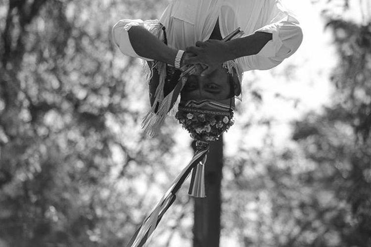 Volando en Chapultepec. Voten por mi fotografía. El link está en mi biografía. Mextagram Mexigers Instagram Instagramers Hallazgosemanal VSCO Vsvocam Canont3 CanonMexicana Canon_official Igersdf Igersmexico Igersmex Instagood Comunityfirst Primerolacomunidad Mextagram_030915