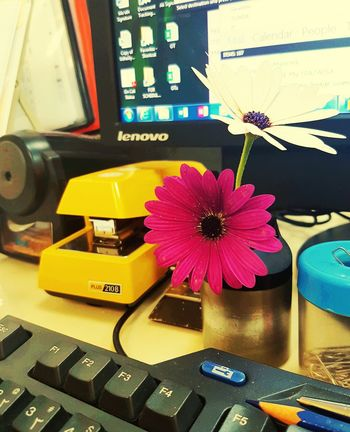 Table Top Office Supply Office Flowers Flowers In Office Flowers On Table Staplers