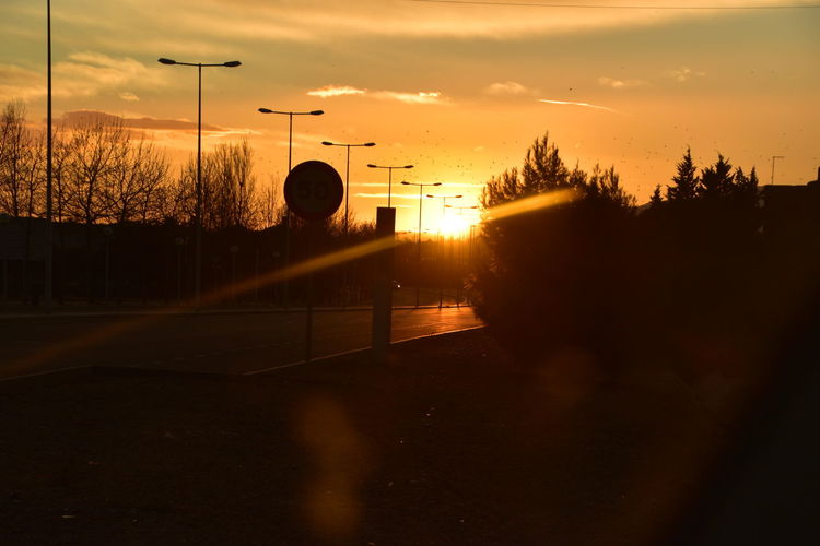 #NikonD5600 #nikonistas_espanha #vidalonga #nikonistas #d5600 #pordosol #España #salou #vilaseca Sport Tree Playing Field Silhouette Sky