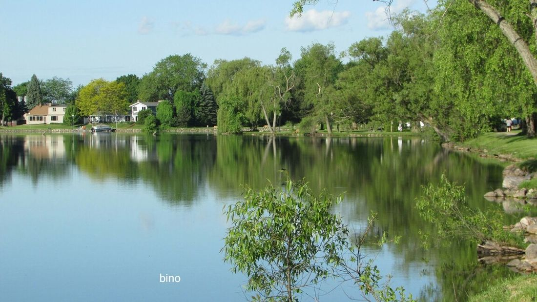Taking A Walk Around The Lake Landscape Lots Of Green!! Cool_capture_ Awesome Reflections No People Lake Cadillac Pure Michigan