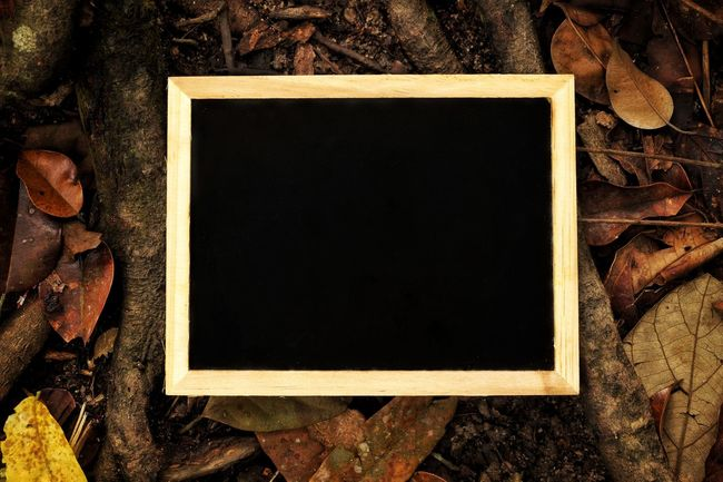 Blackboard on the ground Retro Styled Copy Space Blank Frame Textured  Backgrounds Black Color Photography Themes Picture Frame Message Reminder Day Copy Space Chalkboard Wooden Wooden Log Picture Frame Hiking Outdoors Old-fashioned Directly Above No People Close-up Space Empty