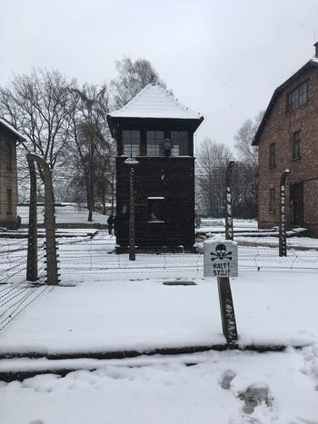 Winter Snow Cold Temperature Weather House Architecture Building Exterior Built Structure Outdoors Poland Solitude Auschwitz  Auschwitz Birkenau Auschwitz Memorial Bare Tree Residential Structure Residential Building Covering Tree Nature Extreme Weather No People Day Snowdrift Snowing
